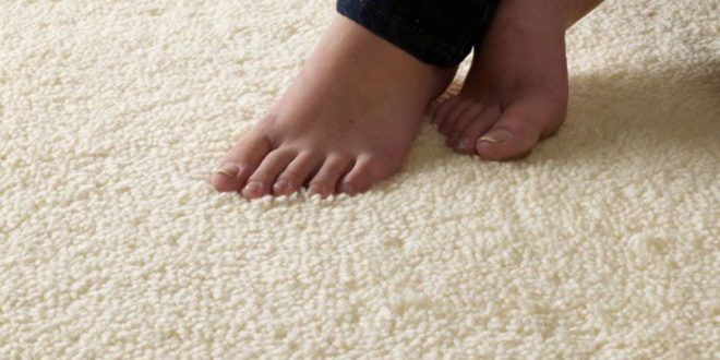 selecting best carpet what you need